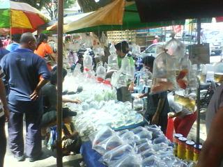 jual ikan bela jalan pasar